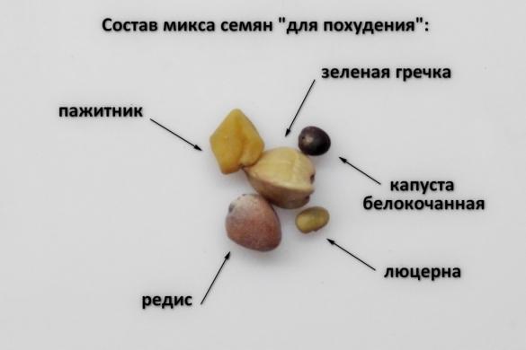 """Микс семян """"Похудение"""", 100гр"""