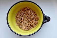 Пшеница отборная, 500гр